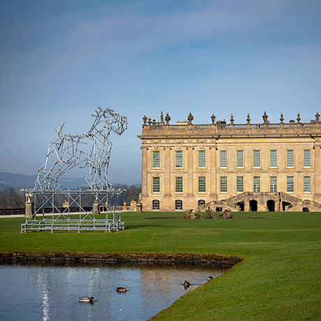 Ben Long Dog Scaffolding Sculpture Chatsworth
